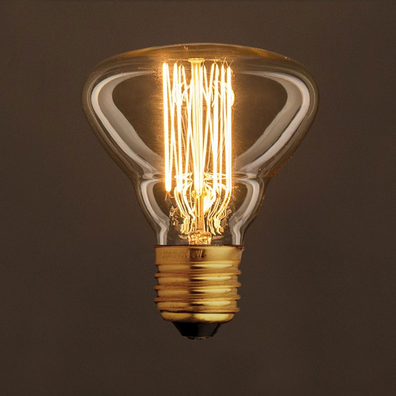 Ampoule Vintage Dorée BR95 Filament Carbone en cage 30W E27 Dimmable 2000K